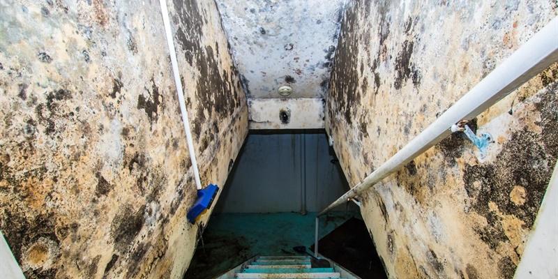 Hoe uw kelder waterdicht maken langs buiten for Huis waterdicht maken